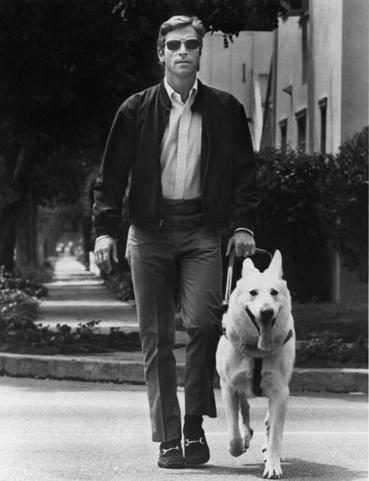 Mike Longstreet walking down the sidewalk with his guidedog named Pax