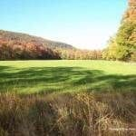 Image of a wide open grassy field in autumn