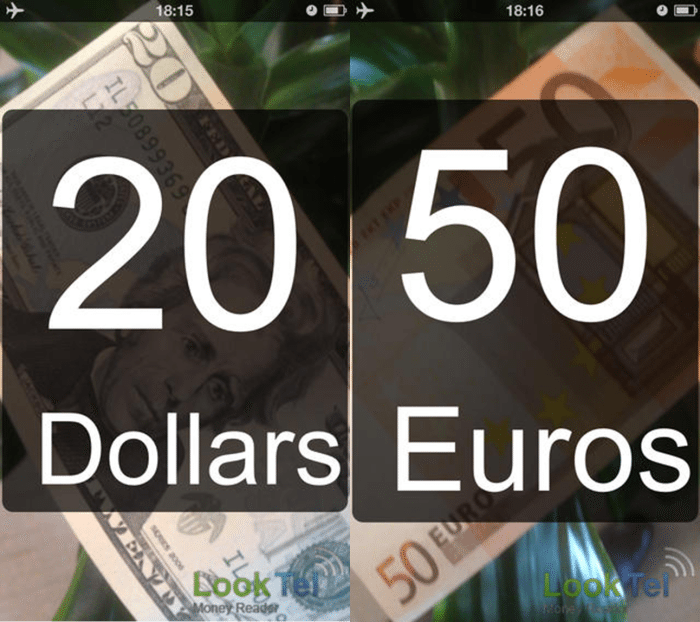 Image showing a LookTel Money Reader screenshot. Image shows a twenty dollar bill and a fifty Euros currensy note