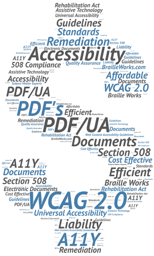Word cloud in the shape of a dollar sign displaying words related to WCAG 2.0 compliance