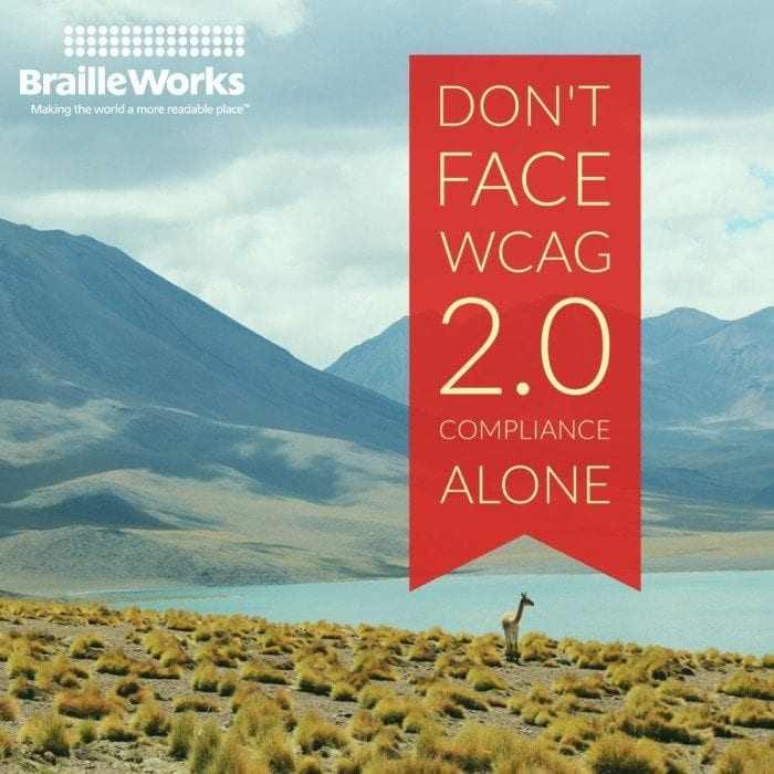 Lone lama in the wilderness with the words Don't Face WCAG 2.0 Compliance Alone.