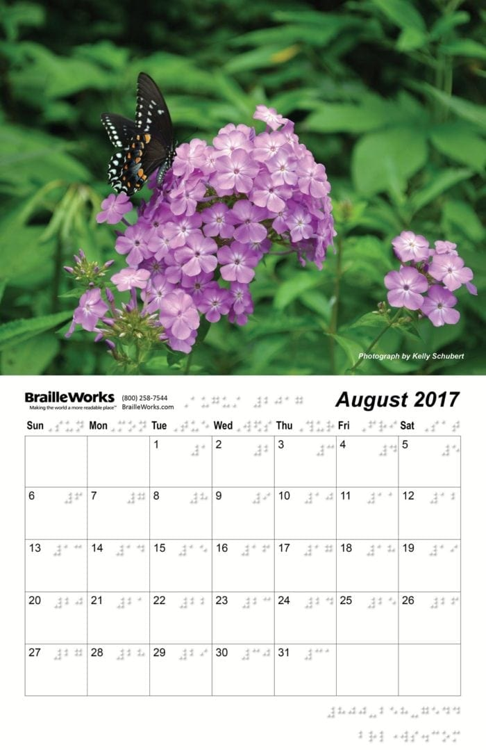 Inside page of the 2017 braille calendars showing the braille dot-layout, violet flowers, and a black butterfly.