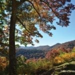 Mountaintop scene in Autumn showing many trees with multi-colored leaves.