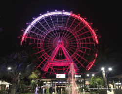 Image of a pink and purple ferris wheel.