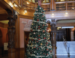 Image of Christmas tree in the middle of a large foyer.