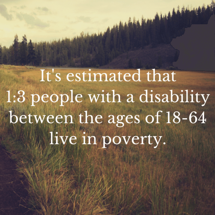 It's estimated that 1 in 3 people with a disability between the ages of 18-64 live in poverty.