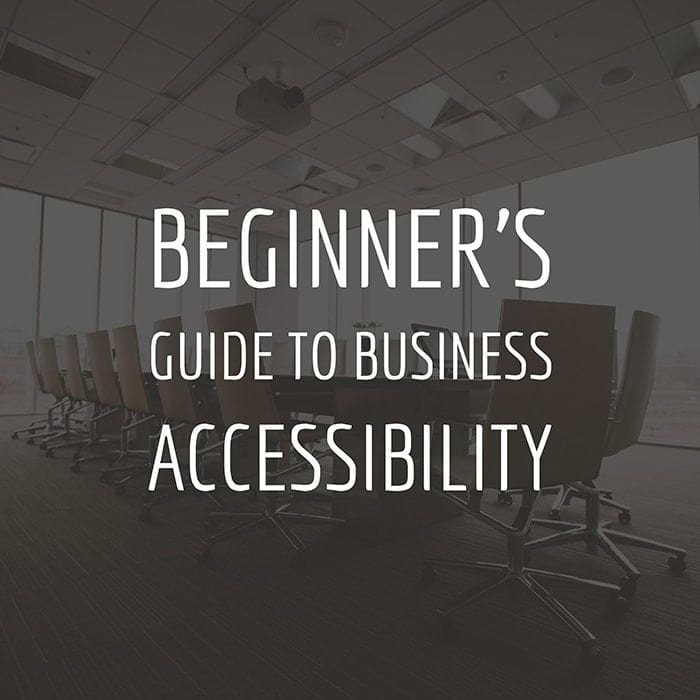 Beginner's Guide to Business Accessibility.