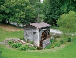 A wooden wheelhouse surrounded by lush, green foliage.