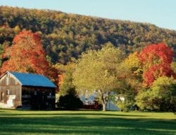 A wooden barn and trees covered in green and fall foliage in the mountains.