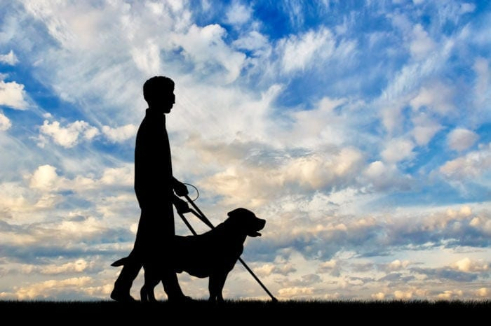 a man with blindness with his guide dog and the sky and clouds in the background to represent the future of the Americans with Disabilities Act