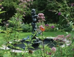 garden with various plants and flowers and an orange monarch butterfly in the middle