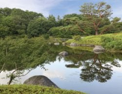 green trees, large rocks and a clear blue sky surrounding a reflective pond