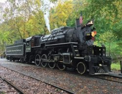 great smoky mountain railroad steam engine surrounded by yellow trees